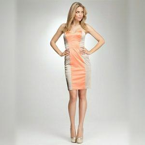 Bebe Strapless Corset Dress